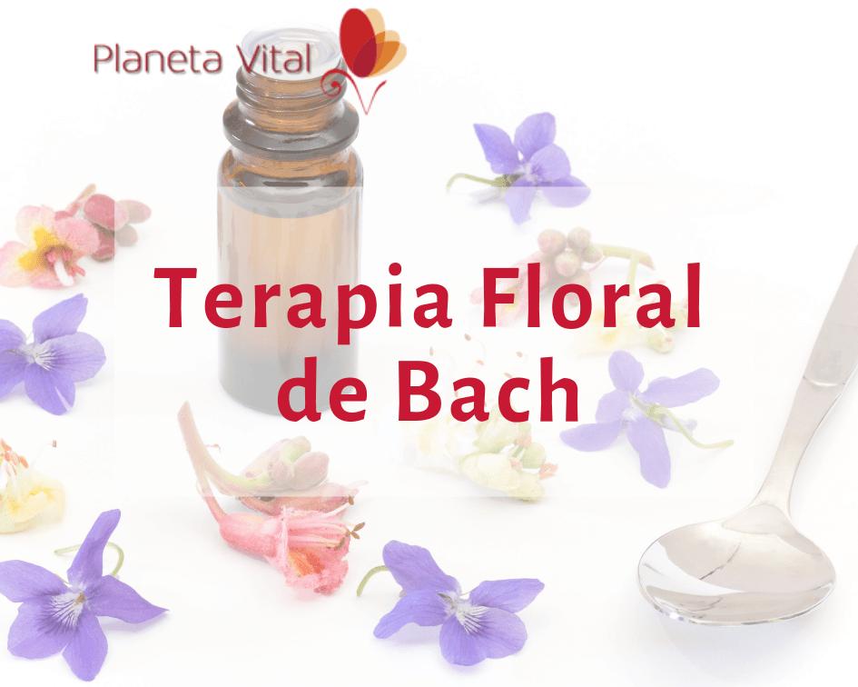Curso Flores de Bach