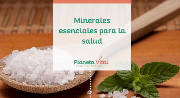 minerales esenciales para la salud