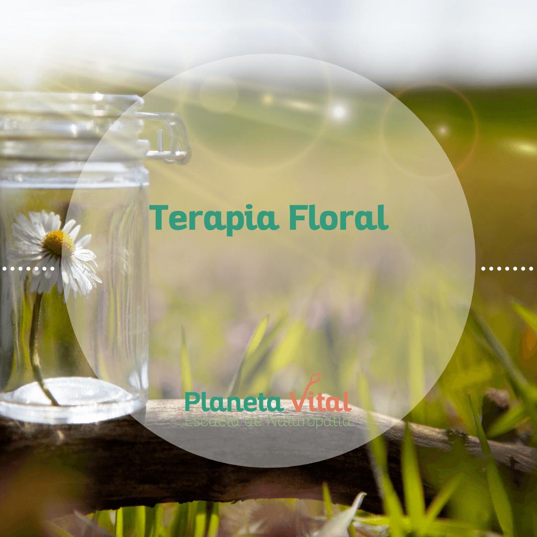 curso terapia floral